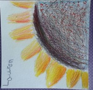 Lauren's Sunflower